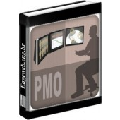 PMO (Project Management Office) para Projetos Industriais